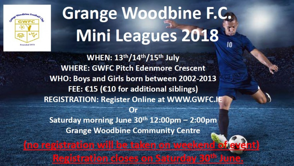 Mini leagues poster